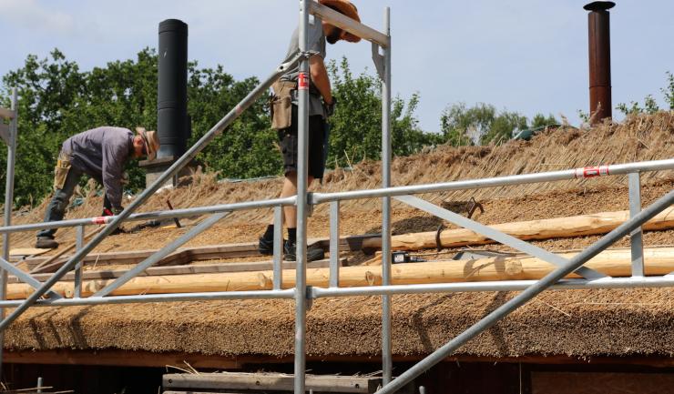 Två byggnadsvårdare lägger vasstak